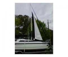 Stay Sail aka Cutter Rig