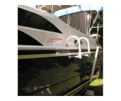 Swim ladder and BBQ grill stand